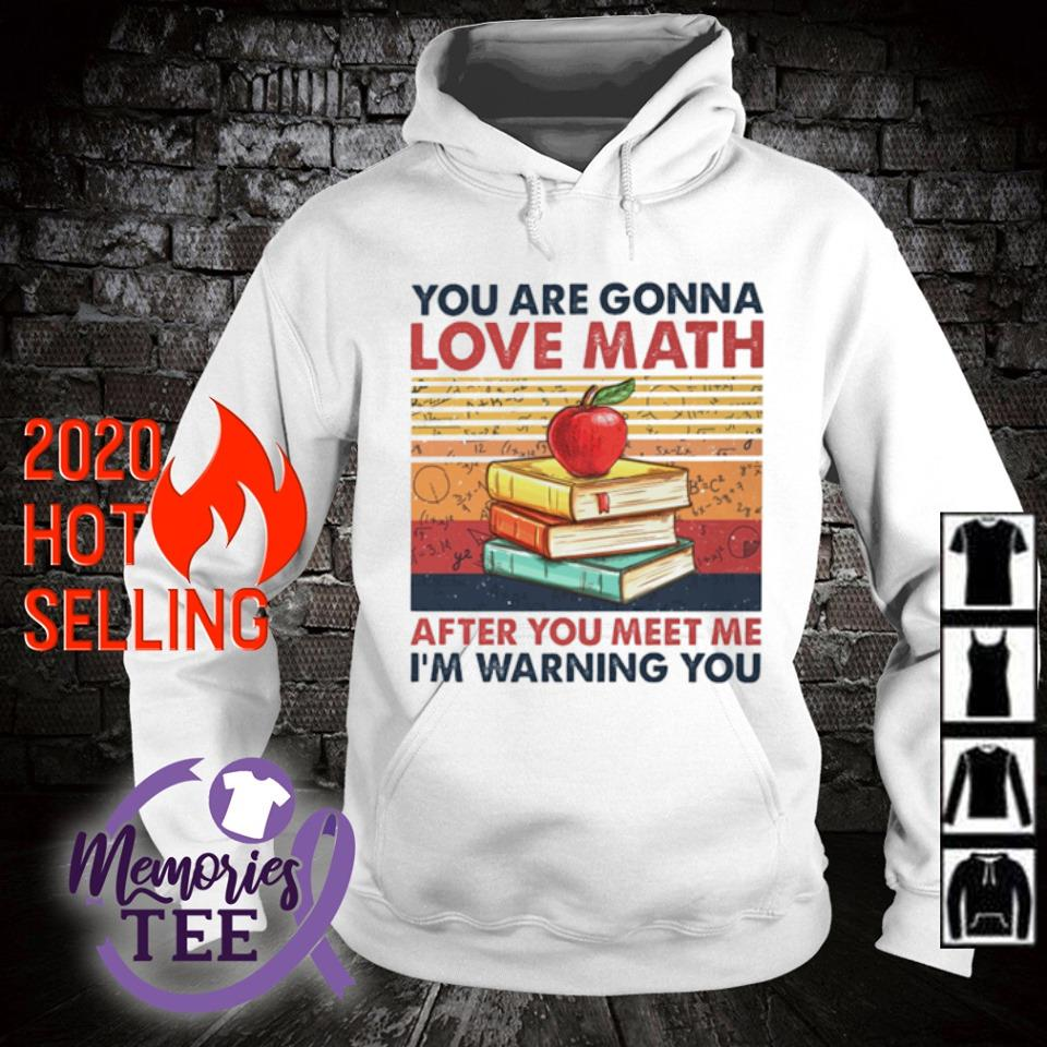 You are gonna love math after you meet me I'm warning you vintage s hoodie